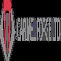 logoחישולי כרמל